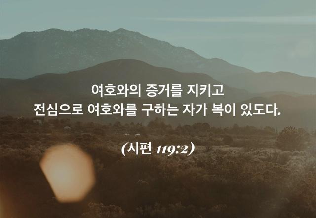 8/22/2019.   (시편 119편)