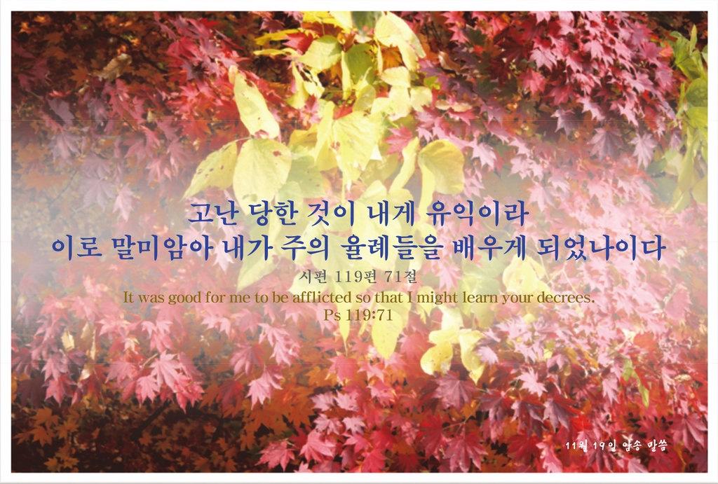 8/26/19 (시편 119편)