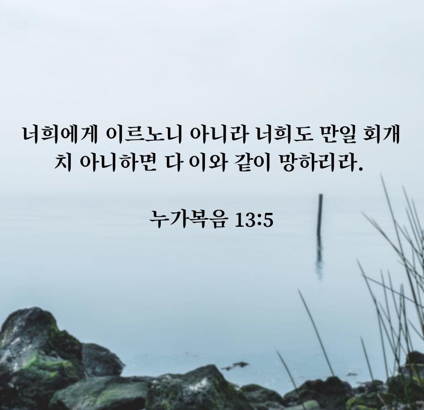 12/12/2019. (누가복음 13장)
